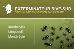 exterminateur-rive-sud