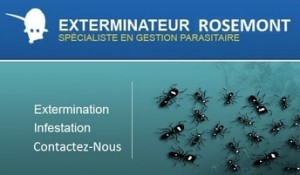 exterminateur-rosemont