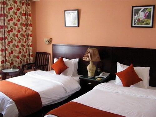 punaise hotel
